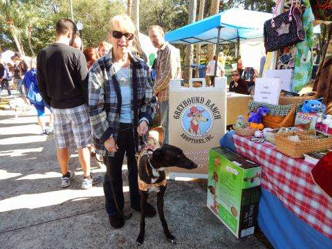 Photo: previous rescue fest, pookiesrescuefest.org